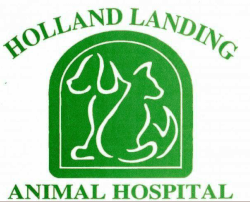 Holland Landing Animal Hospital